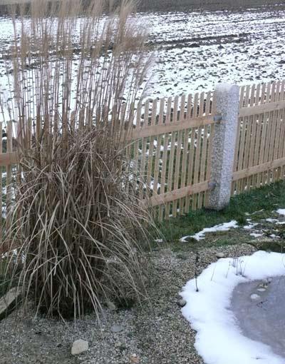 Winter teich filter for Teich im winter
