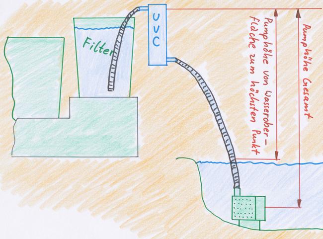 Teich fische ohne filter garten design ideen um ihr for Teich reinigen fische